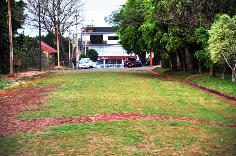 Calle Primero de Marzo casi José Asunción Flores, la calle de piedras y césped de Hohenau